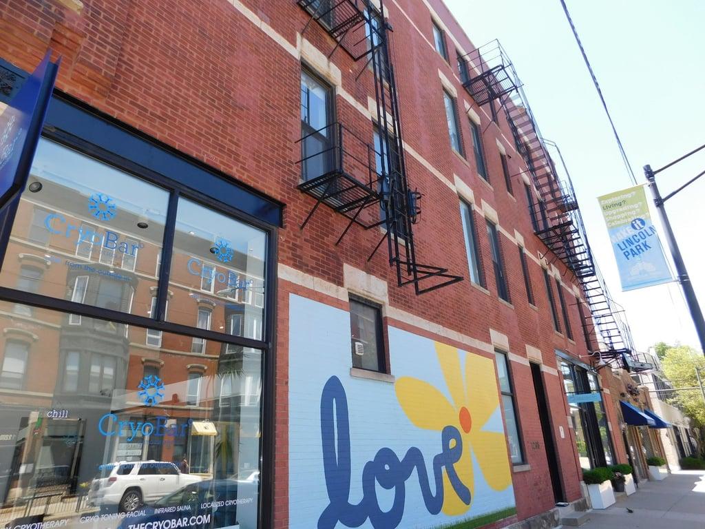 1205 W Webster Avenue -4E Chicago, IL 60614