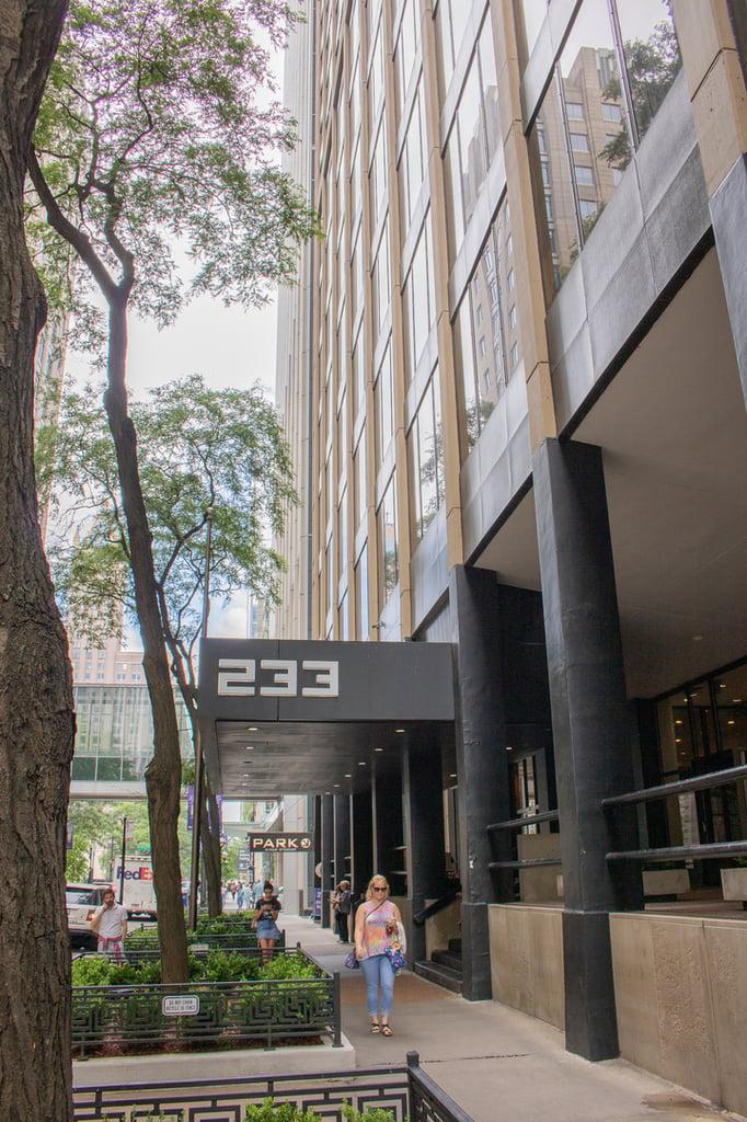 233 E Erie Street -1008 Chicago, IL 60611