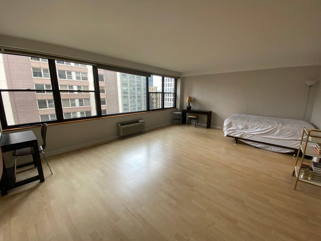 850 N Dewitt Place,Chicago,IL-4213-4