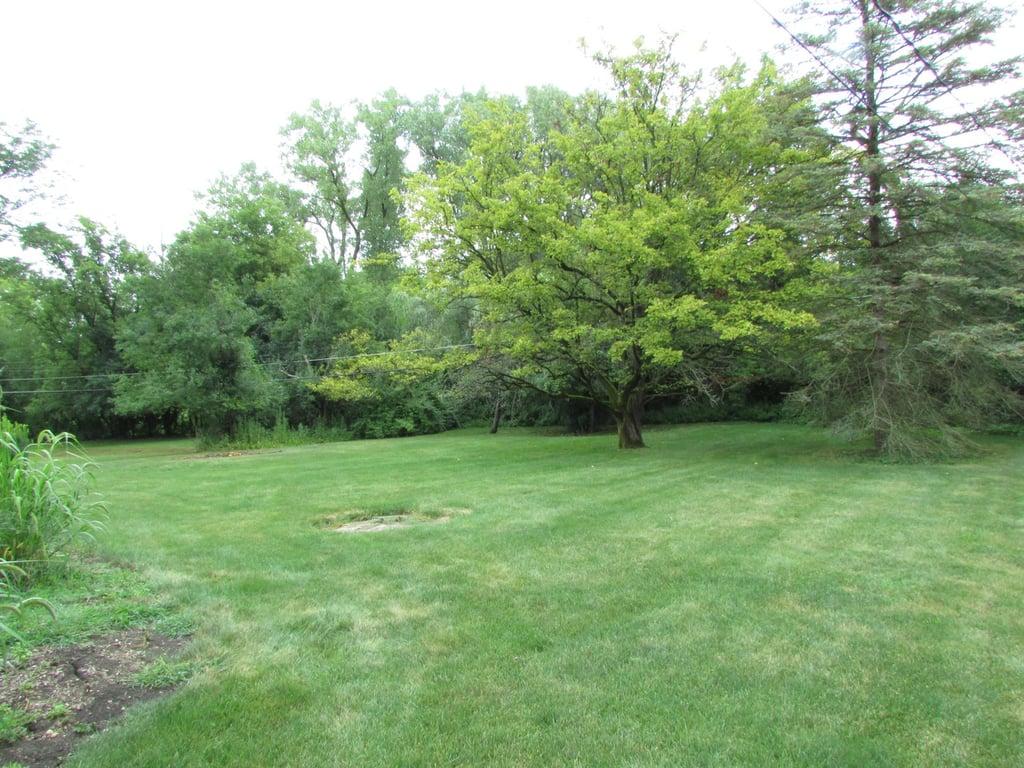 1335 Carlisle Place,Deerfield,IL-37658-26