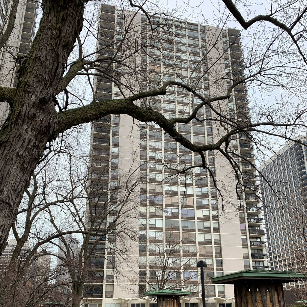 1455 N SANDBURG Terrace -307 Chicago, IL 60610