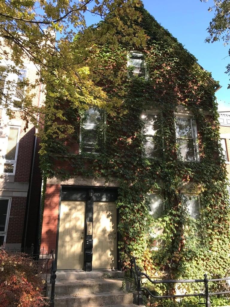 1817 N Bissell Street -3F Chicago, IL 60614