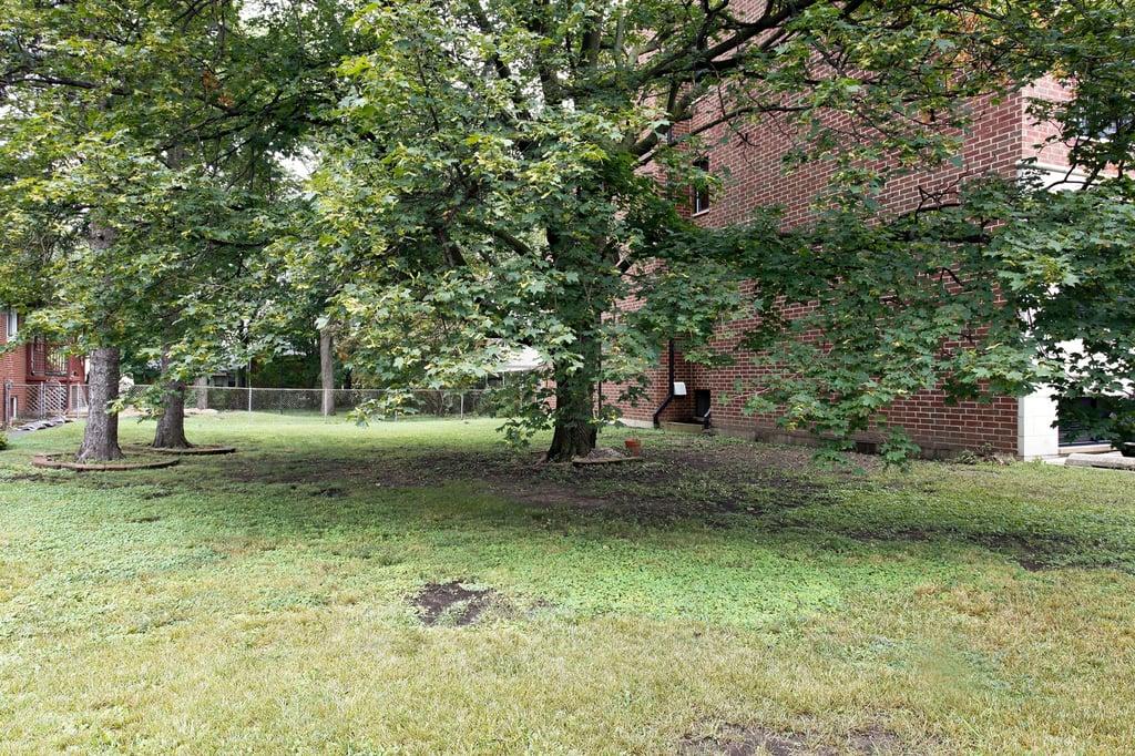 36 E Touhy Avenue,Park Ridge,IL-43592-13